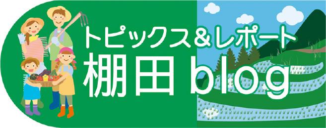 4.棚田ブログ