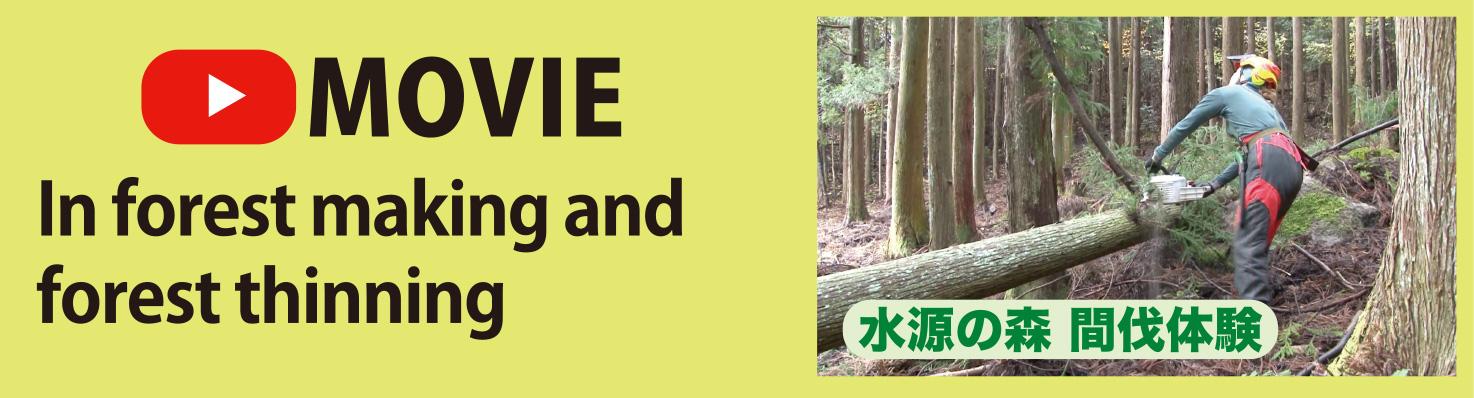 3.森づくり体験(水源の森間伐体験)